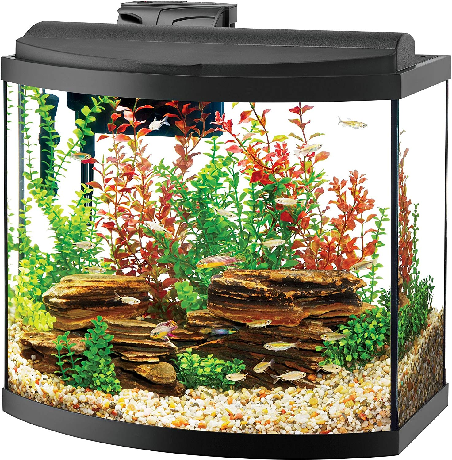 Aqueon Deluxe LED Bow Front Goldfish Aquarium Kit review by www.puppyurl.com