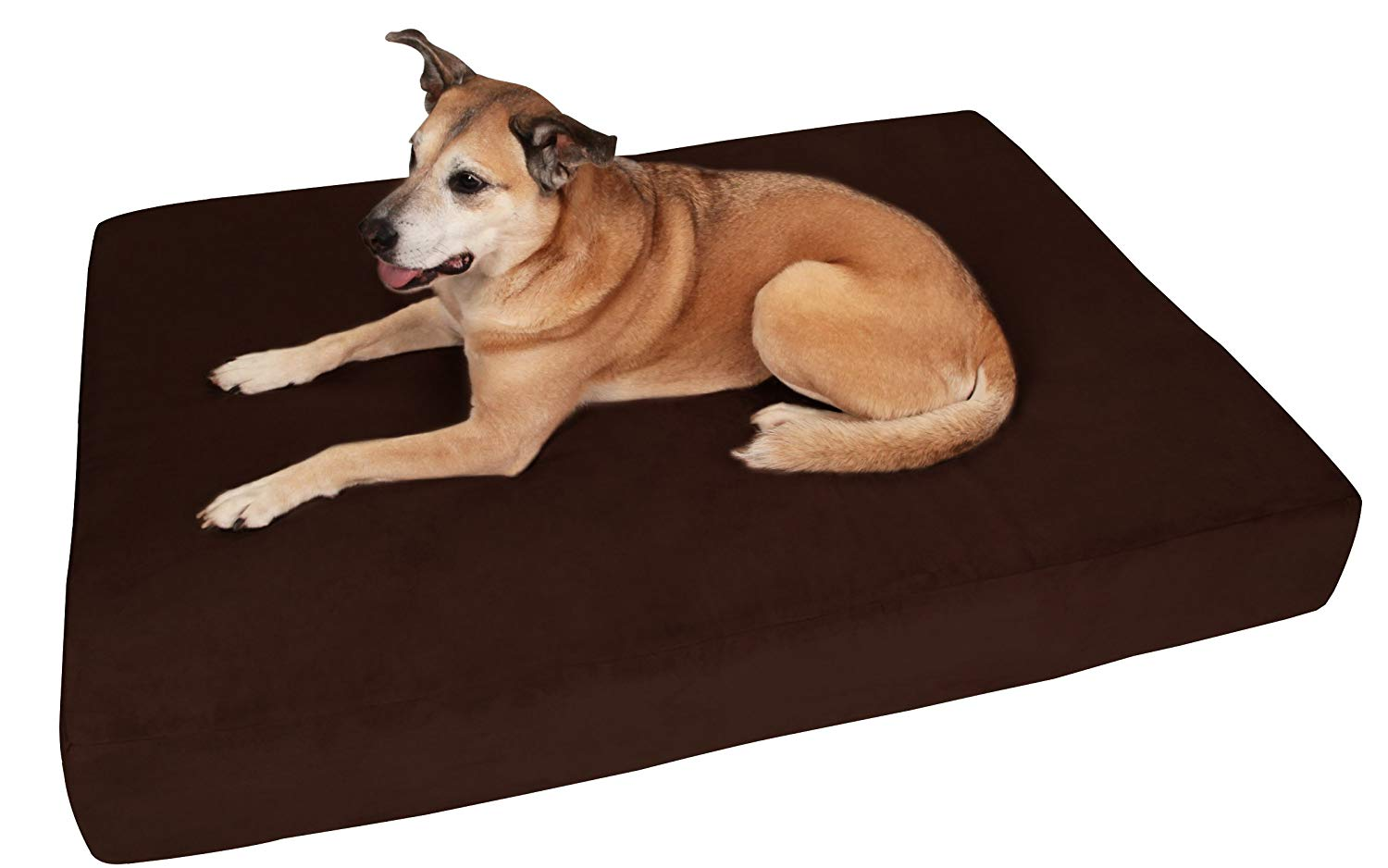 Big Barker 7 Pillow Top Orthopedic Dog Bed Review by www.puppyurl.com