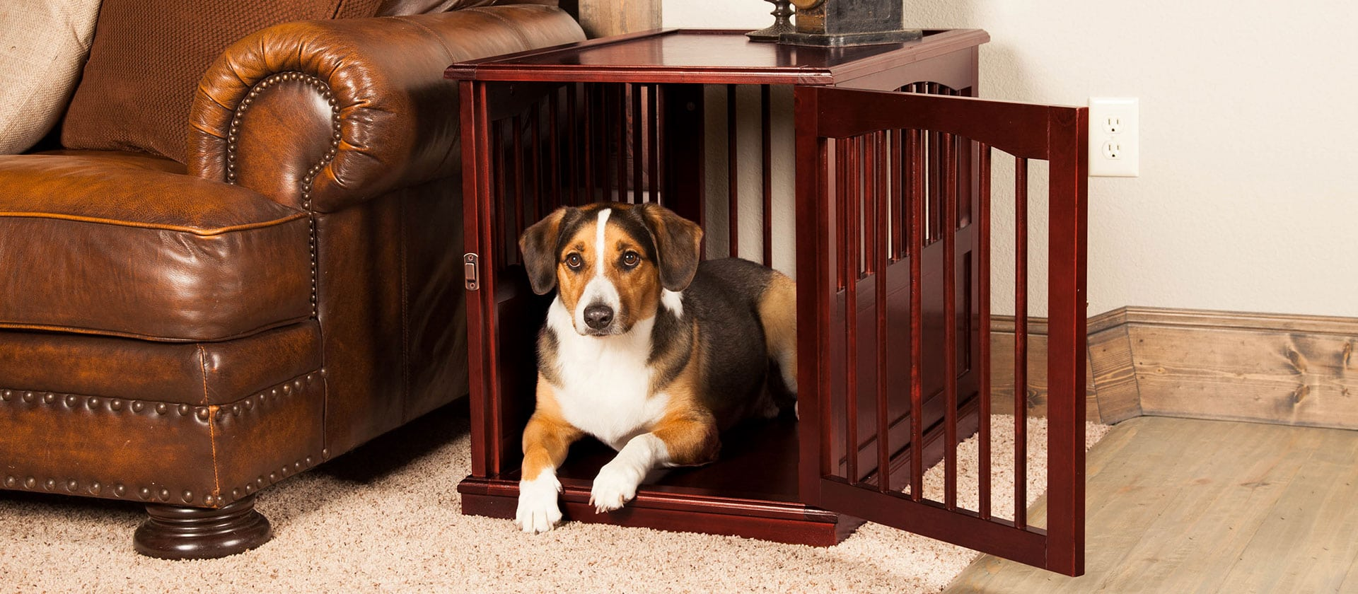 Heavy Duty Dog Crate Review by www.puppyurl.com