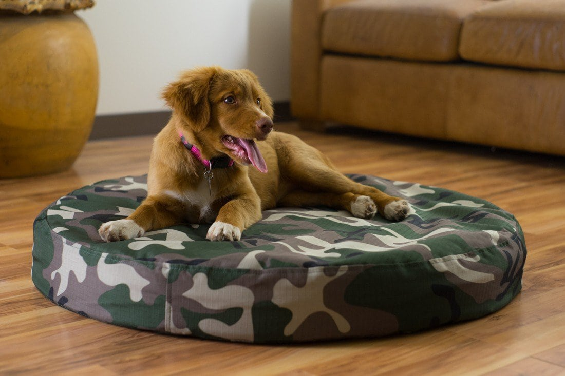 Indestructible Dog Bed reviews by www.puppyurl.com