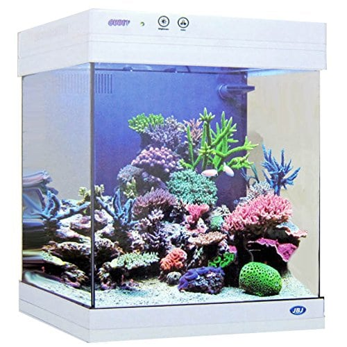 JBJ 20 Gallon White Cubey Goldfish Aquarium review by www.puppyurl.com