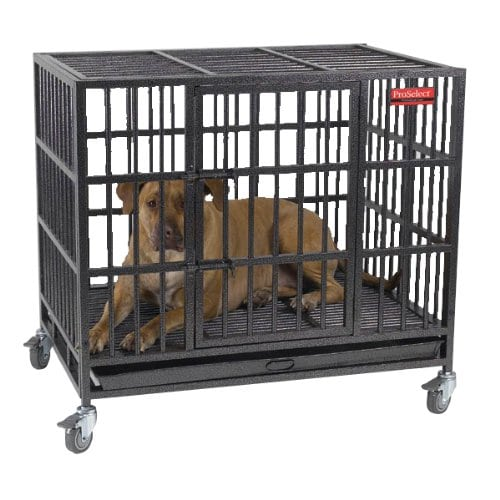 ProSelect Empire Heavy Duty Dog Crate Review by www.puppyurl.com